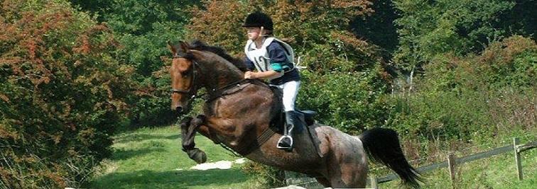 Hill Farm Riding School